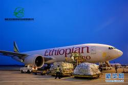 China Indien DHL Expressdienst zum UPS-Federal Express TNT