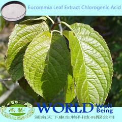На заводе GMP Eucommia Chlorogenic кислоты экстракт листьев/Eucommia извлечения/Eucommia извлечения порошок низкой цене 98%Chlorogenic кислоты
