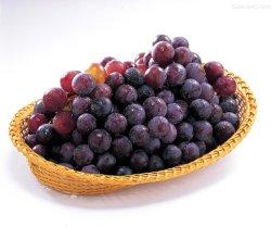 Estratto del seme dell'uva del cemento Portland comune di alta qualità 95%