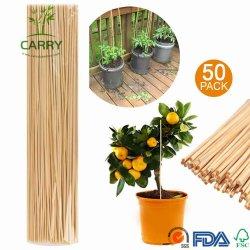 Nouveau design de légumes couverts de plantes en plastique de l'appui de bâtonnets de bambou