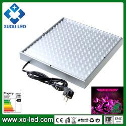 14W/45W/50W/120 W/200W/400W/300W/600wm LED Epistar grandir la lumière avec puces LED faible consommation DC220V