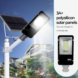2021 تصميم جديد LED الشارع ضوء الشمس LED ضوء بيان المياه IP65 60 واط مع اتصال عن بعد