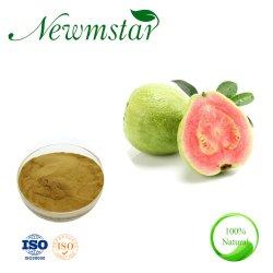 GuavaフルーツのエキスのポリフェノールEllagic酸およびFlavonoidsの粉