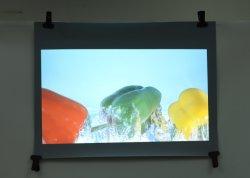 De duidelijke Film van het Venster/de Achter Holografische Film van de Projectie