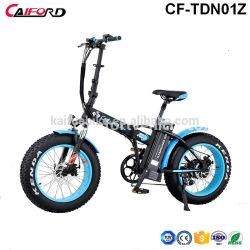Venta caliente bicicleta eléctrica con grasa de la bicicleta de neumáticos