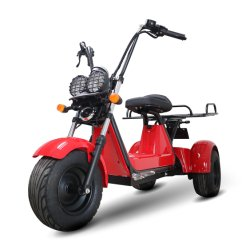 2021 nuevo triciclo eléctrico de bloqueo para la carga con 3 ruedas Tx01/eléctrica Trike