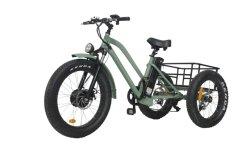 A gordura de três rodas triciclo eléctrico dos pneus da carga para Beach Cruiser