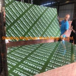 واجه فيلم PP البلاستيكي الأخضر الخشب الرقائقي الخشب القاسي الخشب الرقائقي المقاوم للمياه