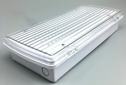 Dsw中国からのEmergecy LEDの非常灯のタイプ209
