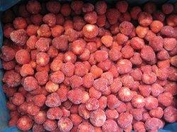 De fraises congelées, 2015 NOUVELLE SAISON