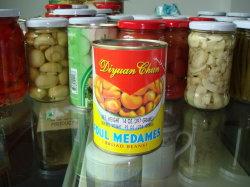 中国からの缶ブロードビーン工場