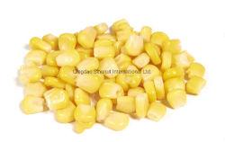 2020 Las ventas de maíz dulce congelada