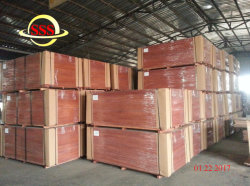 貨物輸送箱修理のための合板のIiclの海洋の床板かターミナルまたはターミナル
