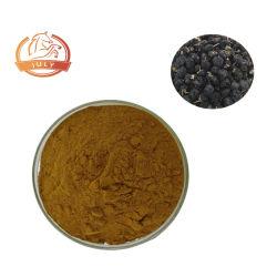 Goji Berry em pó preto 10: 1 20: 1 30: 1 Wolfberry Extraia em pó