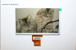 Visor Auo com 800*480 resolução 6,2 polegadas painéis TFT LCD