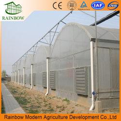 O MAIS BARATO venda quente agrícolas poli/Comercial/Industrial de filme plástico