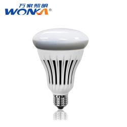 Для использования внутри помещений Fast-Selling Energy Star с регулируемой яркостью R30/Br30 светодиодные лампы