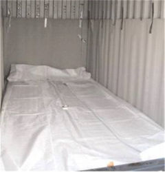 De Tank van Flexi van de Opslag van de Palmolie van China/de Container van de Zak Flexitank/Flexi 20FT