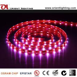 Flexibles Streifen-Licht SMD5060 UL-Cer RGB-30LEDs LED