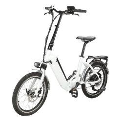 Hinteres der Laufwerk-Aluminiumlegierung-36V 350W 15A faltbares E Großhandelsfahrrad-elektrisches Fahrrad Straßen-der Erwachsen-