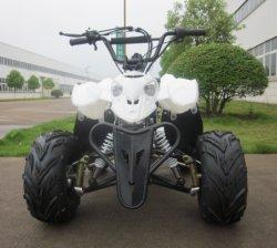 Kettenantrieb Quad 110cc ATV mit EPA und CE