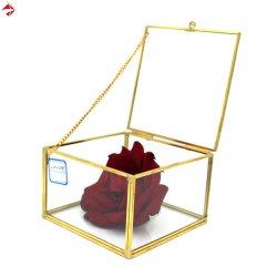 Vierkant Uitstekend Messing/de Duidelijke Decoratieve Doos van het Glas met Deur