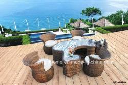 Thé extérieure et intérieure de meubles en osier Table tissage BP-A68A