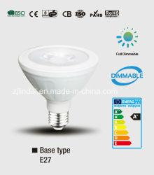 A intensidade de luz da lâmpada PAR LED Par30-SBL