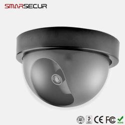 Intelligente Innen-/im Freien blinde Hauptabdeckung-Fälschung CCTV-PlastikÜberwachungskamera mit blinkendem rotem LED-Licht