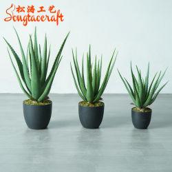 작은 홈 장식 도료 숙크카렌트 본사이 트리 인공 알로에 베라 식물