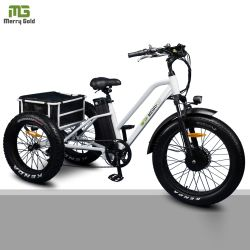 24inch 뚱뚱한 타이어 3 바퀴 성인을%s 전기 세발자전거 Trike 페달 자전거