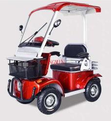Mini veicolo elettrico a quattro ruote automatico 60V500W di mobilità di energia verde con CE e musica