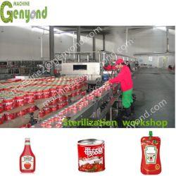 Kleine Tomato Ketchup Verarbeitungslinie Alle Größen Aseptische Verpackung Tomato Paste