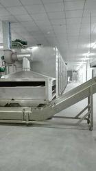 Groente en Fruit voor de Machine van de Riem van het Netwerk voor u voor Voedingsmiddelenindustrie
