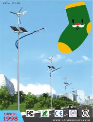 Indicatore luminoso di via solare del LED con il generatore di vento (BDTYN5)