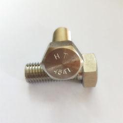 254のSmo 254smoの締める物の付属品