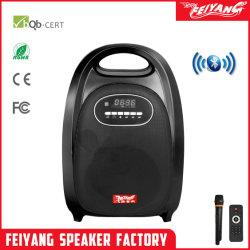 Temeisheng Feiyang/мини-мощные АС с Bluetooth - F-74s