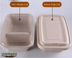 Takeaway descartáveis Lancheira com tampa separada/ PET/PP dois ou três compartimentos