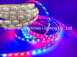 Illuminazione flessibile delle decorazioni LED di natale dell'indicatore luminoso di natale della striscia RGB del pixel indirizzabile LED della trasmissione continua Ws2815 Digitahi