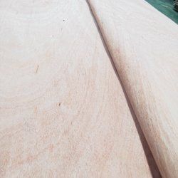 Оптовая торговля нарезанные вырезать из тикового дерева/Дуб/из естественной древесины шпона