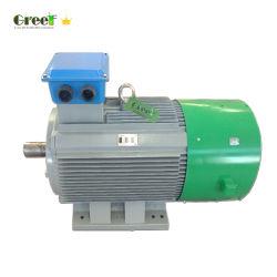 바람 /Hydro 힘을%s 저속 영구 자석 발전기