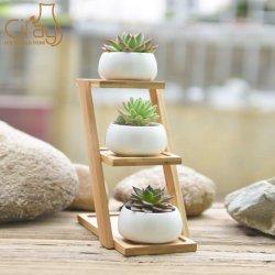 Mini moderna fábrica de Cerâmica vasos com três camadas suporte de bambu