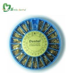 240 ПК стоматологических винт с золотым покрытием должностей поперечной головки блока цилиндров