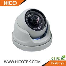 IP67 IK10 mini domo de infrarrojos del globo ocular analógico de CCTV Ahd Tvi wireless 4G WiFi Home videovigilancia digital de seguridad IP Poe Fisheye Vr Cámara panorámica