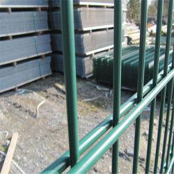 1030*2500mm recouvert de PVC double clôture en grillage vert