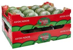 China Shpplier Custom légume fruit cadeau carton pliable carton ondulé Boîte pour mangue banane pomme de terre tomate fraise Blueberry