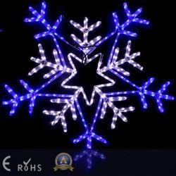 LED 주제 빛 (SRM) 별