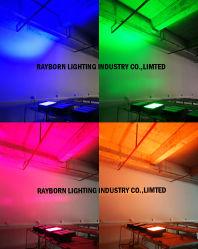 녹색 고성능 스포트라이트 100W 150W 200W 또는 파랑 또는 빨강 또는 자주색 호박색 방수 해병 LED 플러드 빛