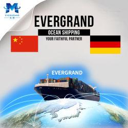 Berufsseefracht-Verschiffen-Service von China zu Deutschland/zu Hamburg/zu Bremerhaven