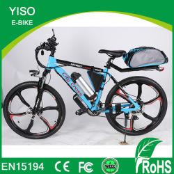 Off Road 36V 13Ah 2 Roues vélo électrique de magnésium dans l'Inde Usine chinoise
